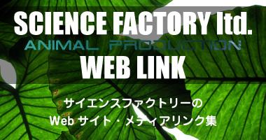 webリンク